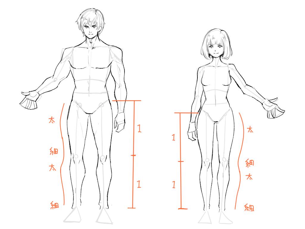 4ステップで描ける!比率を意識した体の描き方をイラスト解説【脱・顔 ...